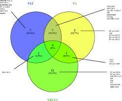 Best Venn Diagram Ever Best Venn Diagram Magdalene Project Org