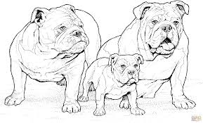 Small Picture English Bulldogs with Puppy coloring page Free Printable