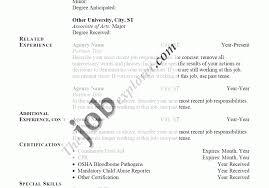 Resume Summary For Cv Wonderful Resume Writer Free Wonderful