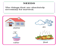 Needs And Wants Chart Needs And Wants Worksheets