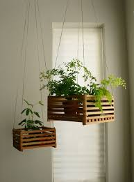 Invite Nature In With 20 Incredible Indoor Plants Ideas-homesthetics (2)