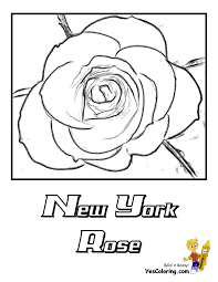 Rose Flowers Coloring Pages   Free  YesColoring   Rose Coloring ...