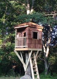 tree house pictures