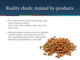 bone meal for dogs. 8. Bone Meal For Dogs Y
