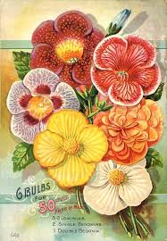 free flower seeds free flower garden catalog g bulbs for cents vintage flowers seed packet catalogue advertisement poster free free flower seeds by mail