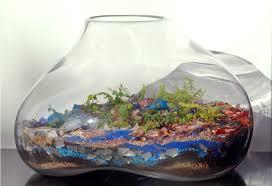 large glass terrarium for home