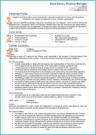 Accountant Cv Templates Senior Template Examples Pdf Doc Assistant