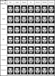Paradigmatic Micro Expressions Chart 2019