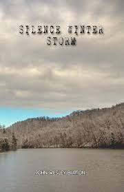 Buy Silence Winter Storm Book Online at Low Prices in India | Silence  Winter Storm Reviews & Ratings - Amazon.in
