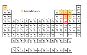 Alien Periodic Table Answers 202 Portray Magnificent Activity ...