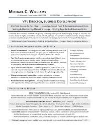 Executive Resume Writers Impressive How To Start A Resume Writing Business Juvecenitdelacabreraco