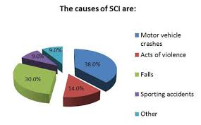 Spinal Cord Injury Chart Spinal Cord Injury Statistics The Miami Project To Cure