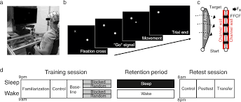 variable training but not sleep improves consolidation of motor adaptation scientific reports