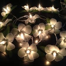 indoor string lighting. Indoor String Lighting