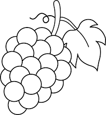 black and white grapes clipart. Beautiful Grapes Svg Royalty Free Line Art Of A Bunch Grape Pinterest Png Transparent  Download Grapes Clipart Black And White And Black White Clipart Melbournechapternet