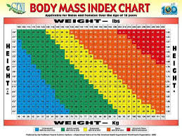 Body Index Chart Body Mass Index Chart