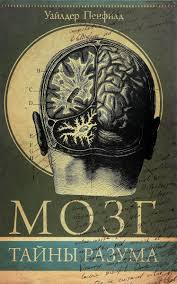 """Книга """"<b>Мозг</b>. <b>Тайны</b> разума"""" — купить в интернет-магазине OZON ..."""