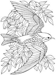 Small Picture Easy printable coloring pages of birds Grootfeestinfo