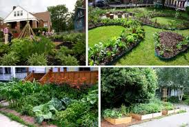 Small Picture Front Yard Vegetable Garden Ideas Design Your Life