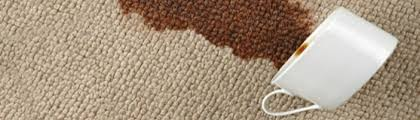 classic care recommends having scotchgard carpet protection professionally applied office and waiting room upholstery as well as high traffic areas