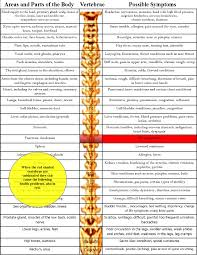 Vertebrae Number Chart Ulcers Back To Life Chiropractic