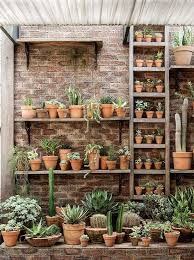 Small Picture Best 25 Succulent gardening ideas only on Pinterest