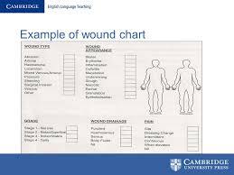 Wound Charting Examples Wound Assessment Diagram Schematics Online