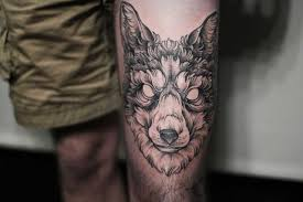 тату волк значение фото эскизы и примеры для мужчин и девушек