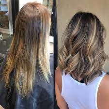 Before And After Balayage Shorthair