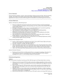 Lovely Excel Resume Sample Baskanai How To Write A Professional