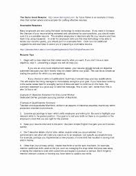 Resume Format 2017 Examples Best Of Proper Resume Format 2017 ...