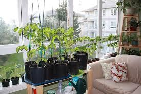 15 indoor garden apartment design ideas