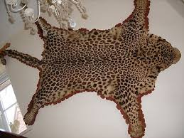 taxidermy real leopard pelt skin fur rug with head van ingen style 310774100