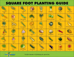 Small Picture An Optimized Vegetable Garden Plan Best Ideas About Layout Planner