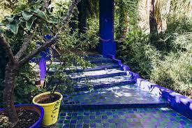 beautiful blue stairs and plants in