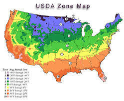 Hardiness Zone Chart What Zone Am I In For Planting Garden Plants Vegetable