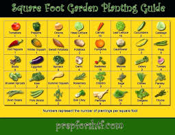 square foot garden plans square foot gardening how to build box