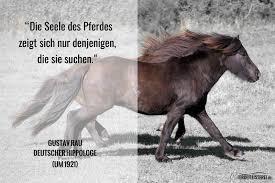 Sprüche Pferde Vertrauen Italiaansinschoonhoven