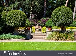 nature landscapes a view of steps and a seat in an english garden in the