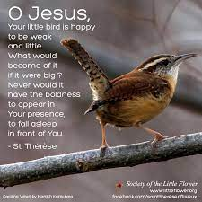 O Jesus, Your Little Bird - St. Therese