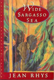 wide sargasso sea study guide novelguide wide sargasso sea study guide choose to continue