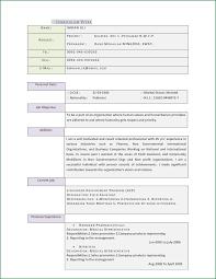 11 resume pattern simple applicationsformat info cv resume general curriculum vitae by emraanalee