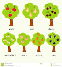 Trees Stock Vector Illustration Of Picture Chart Plum