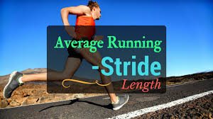 What Is The Average Stride Length In Competitive Running