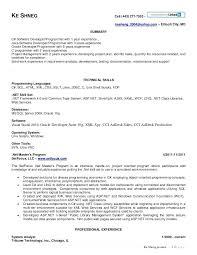 sample resume for dot net developer experience 4 years thumbnail