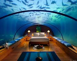 This Aquarium Is A Dog House Youtube Bill Gates Living Room - Bill gates interior house