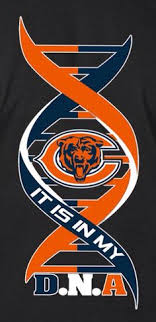 it s in my dna nfl bears nfl chicago bears chicago football chicago bears