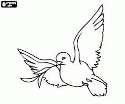 Kleurplaat De Witte Duif Het Symbool Voor De Vrede Kleurplaten