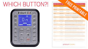 Which Instant Pot Buttons To Use Pressure Cooking Today