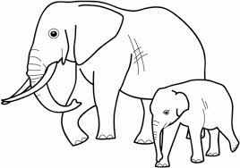 Baby Elephant With Mother Coloring Page Free Printable Coloring Pages